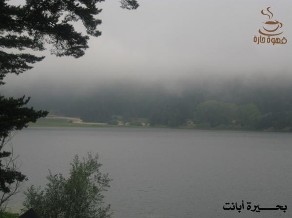 picture_019