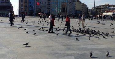 كيف تصل إلى أهم معالم استانبول